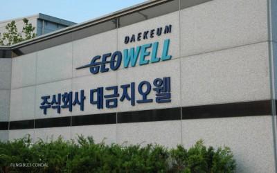 construcción GEOWELL – Nueva Fábrica